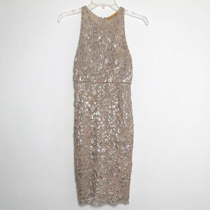 Alice + Olivia Tan and Silver Lace Dress